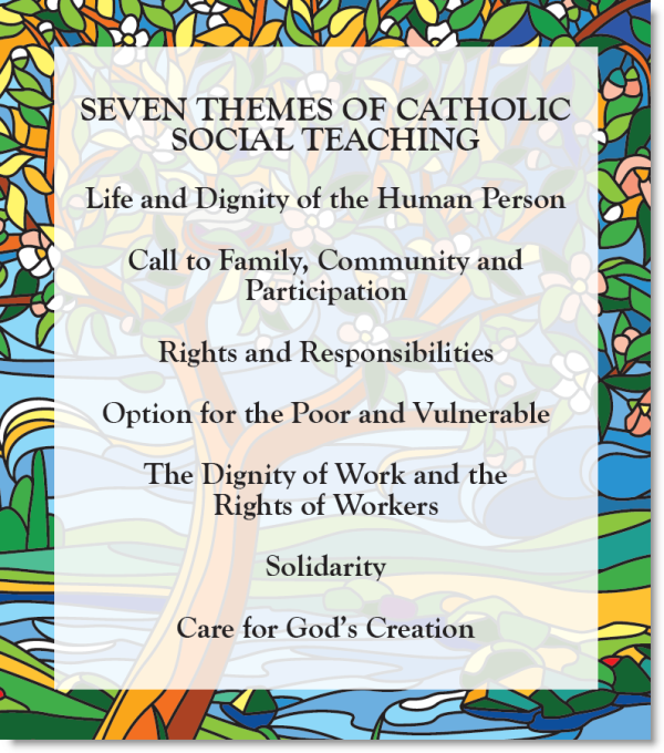 7 Themes Of Social Justice